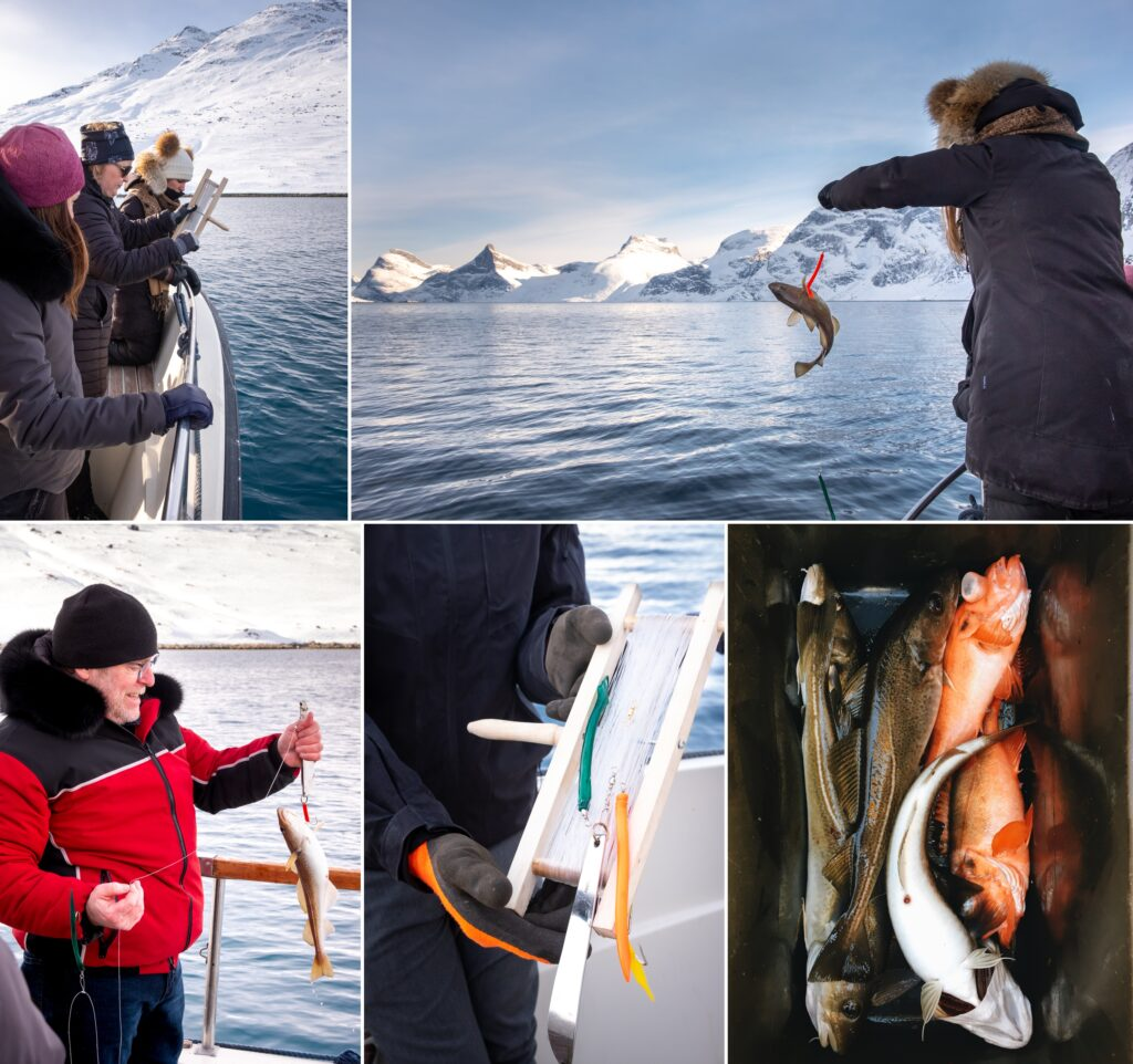 Montage of images showing fishing excursions in the Nuuk Fjord, Greenland