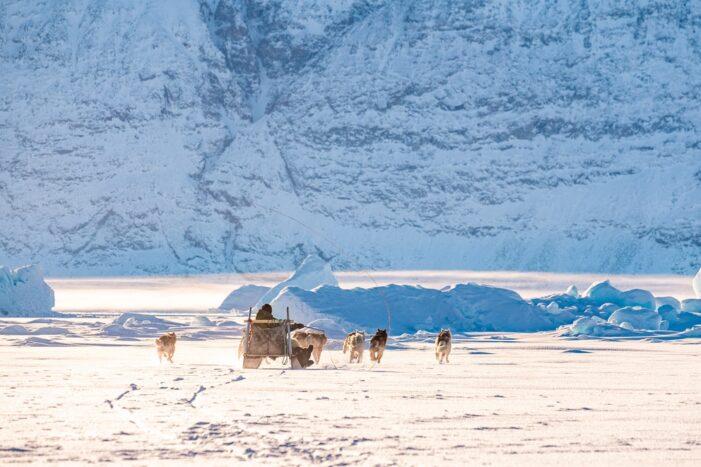 Dogsledding – 4 hours | Uummannaq | North Greenland