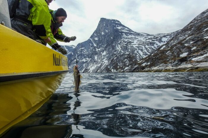 Fishing for cod | Nuuk | West Greenland