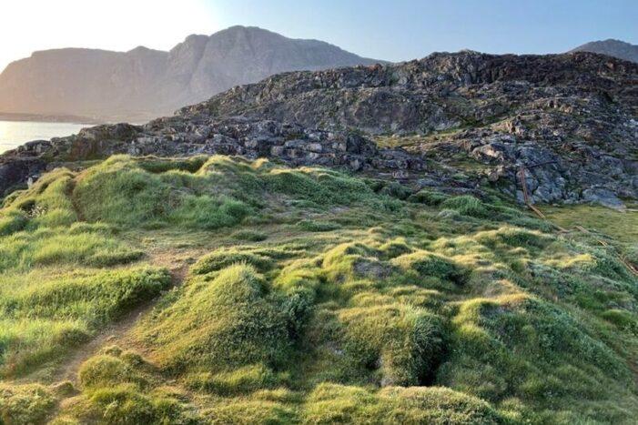 Vandretur Tilbage i Tiden | Sisimiut | Vestgrønland