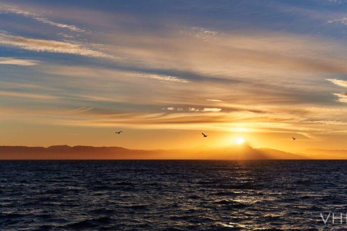 Icefjord Affair | Private tour | Nuuk