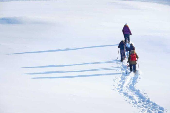 Snowshoe Winter Hike | Sisimiut