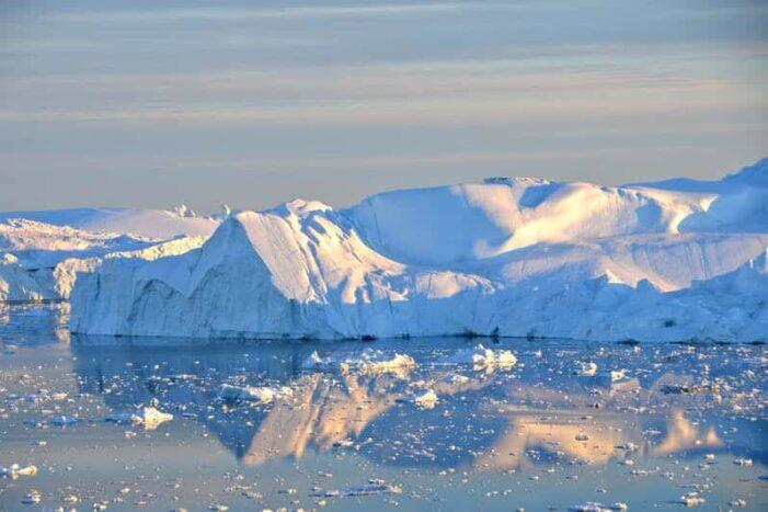 Isfjord Sejlads | Ilulissat | Diskobugten