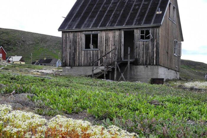 Sullorsuaq Cruise | Kaptajnens Favorit | Ilulissat | Diskobugten