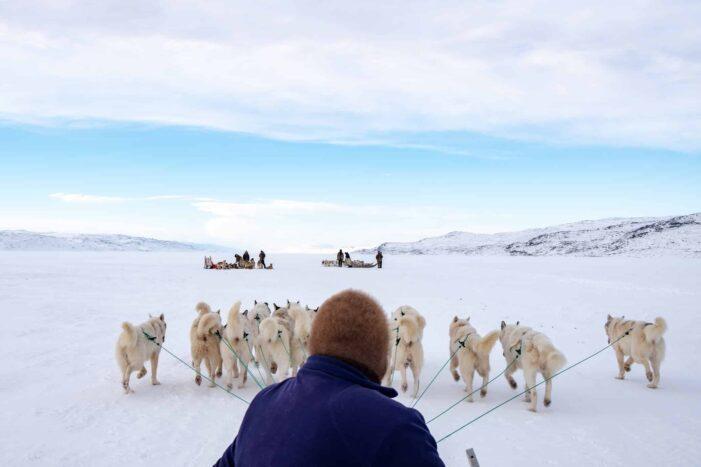 Dog sledding expedition | Kangerlussuaq to Sisimiut | West Greenland