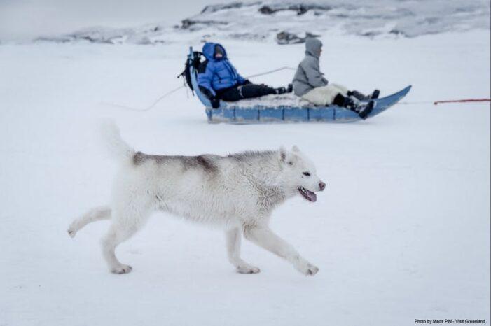 Expedition on Dogsled | 2 Days | Ilulissat