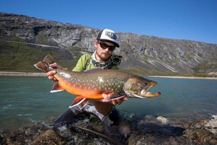 Fish in the Arctic | Maniitsoq | West Greenland