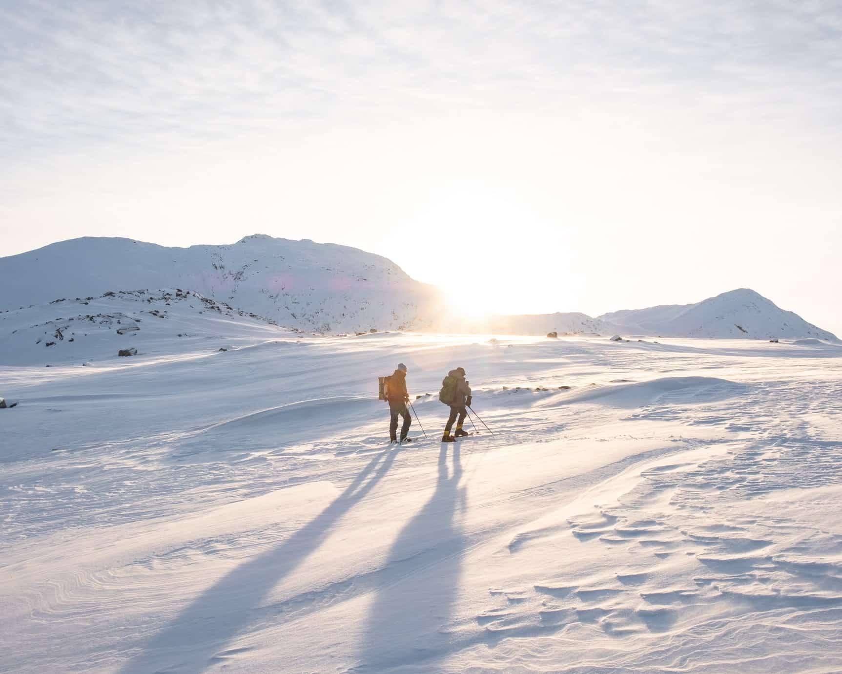 Ski & Snowshoe Tours