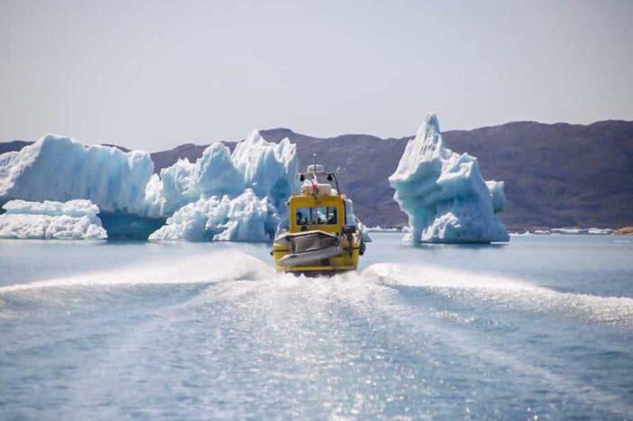 Gletsjer Cruise | Qaqortoq | Sydgrønland