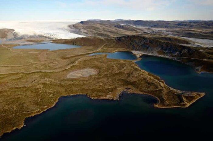 Moskus, Rensdyr og Indlandsis | Kangerlussuaq