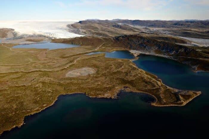 Musk Ox, Reindeer & Ice Cap Tour | Kangerlussuaq