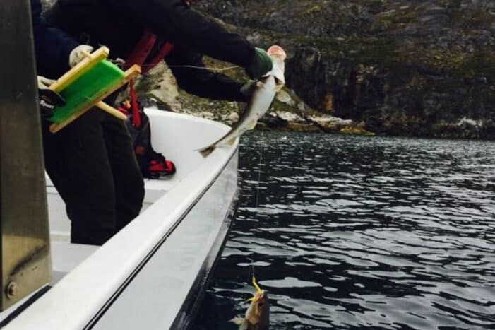 Out Of Town Fishing Adventure | Private tour | Oriartorfik | Nuuk