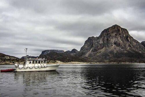 Hav Safari I Sisimiut I Nordgrønland