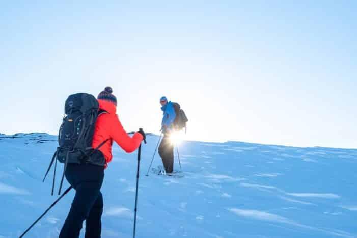Snesko Vandring | Ilulissat | Diskobugten