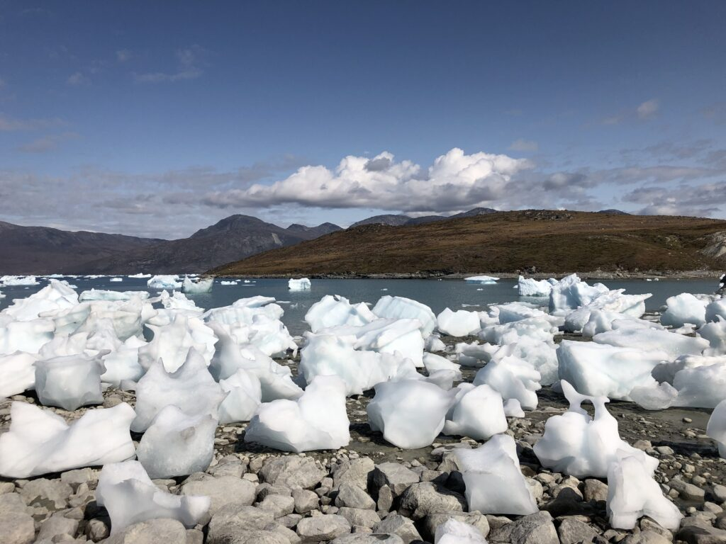 Icebergs in the beach near Kapisillit