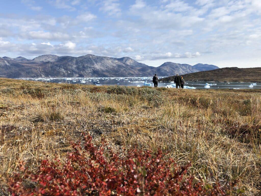 Kapisillit fjord