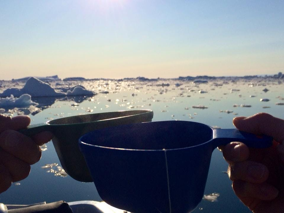 Clinking cups of tea and the icefjord