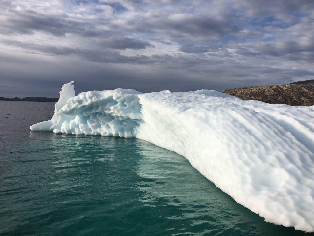 Iceberg in the fjord