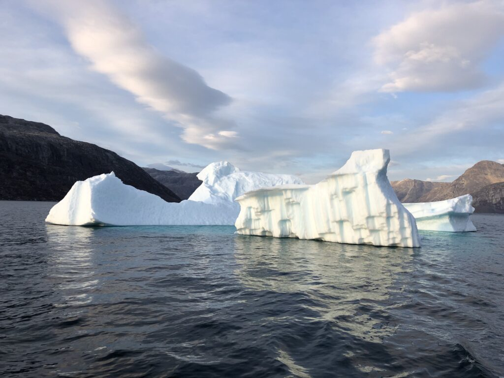 Large icebergs in the water