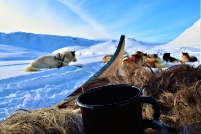 Dog Sled Expedition | Tasiilaq | East Greenland
