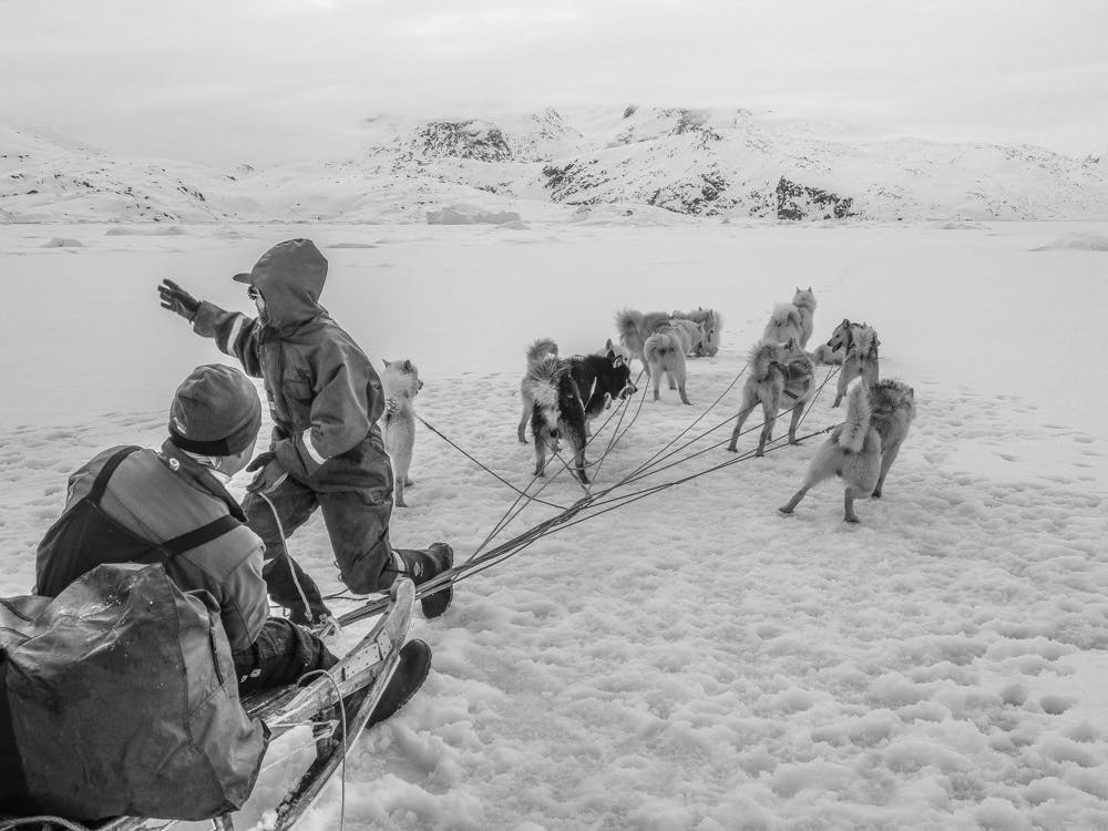 Musher almost ready to go