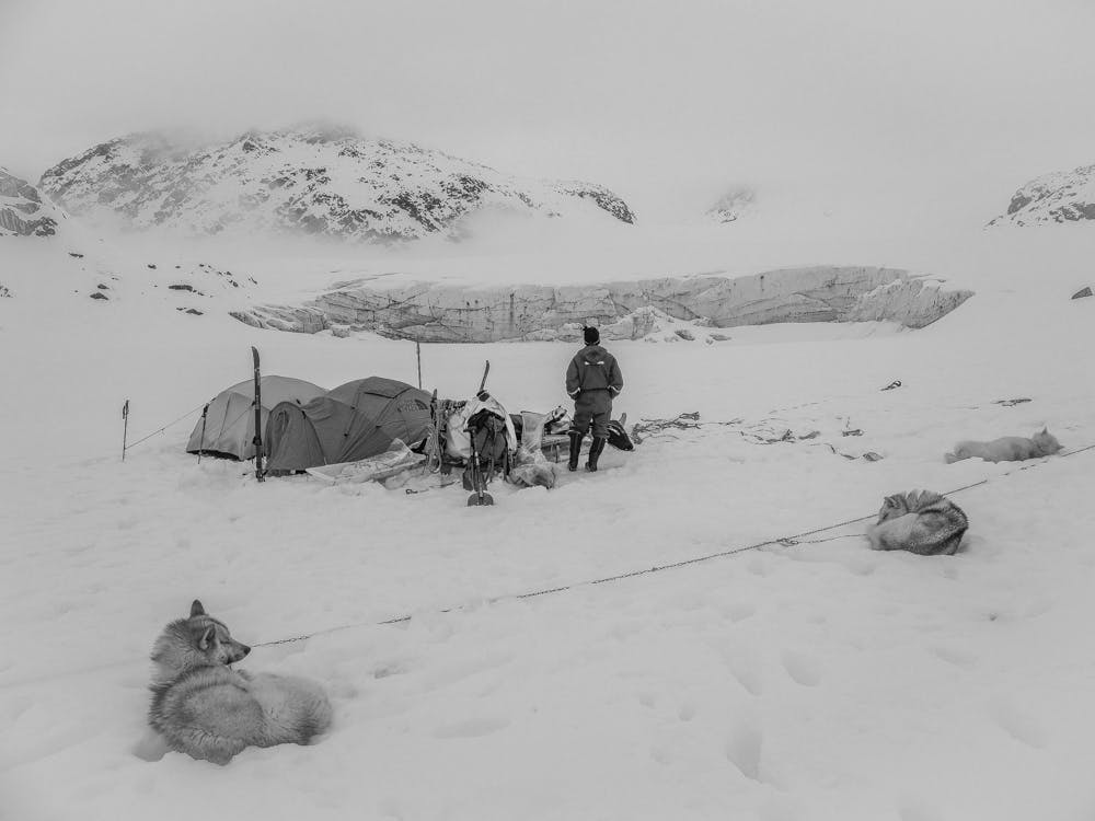 Dog sled expedition camp