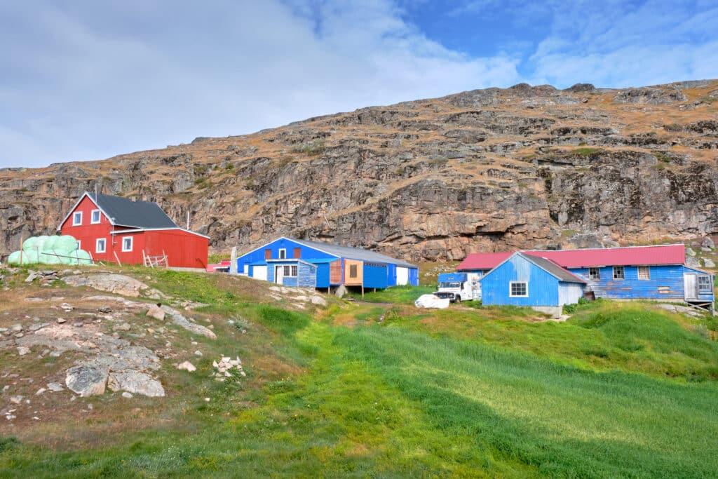 Qaqortoq sheep farm