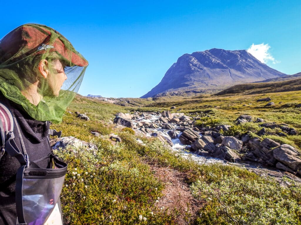 Hiker wearing a head net during a hike on summer vacation in Greenland