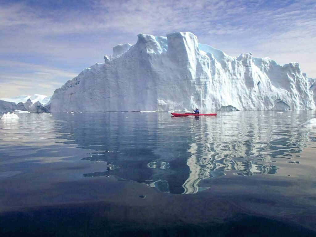 Turist kayaking near giant icebergs in the fjord