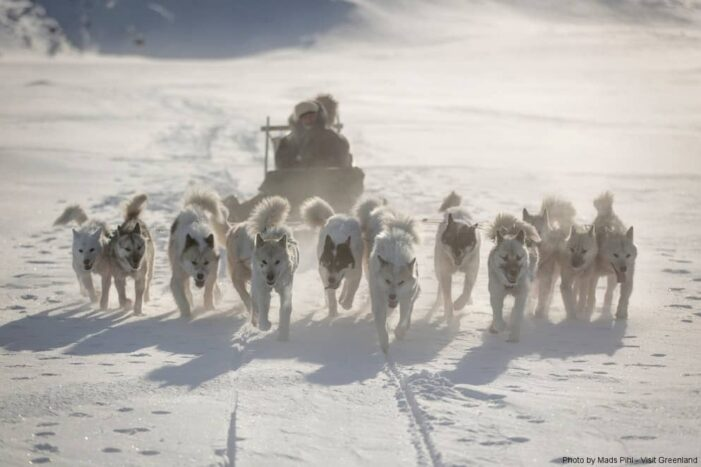 Multi-day Dogsledding from Tasiilaq | East Greenland