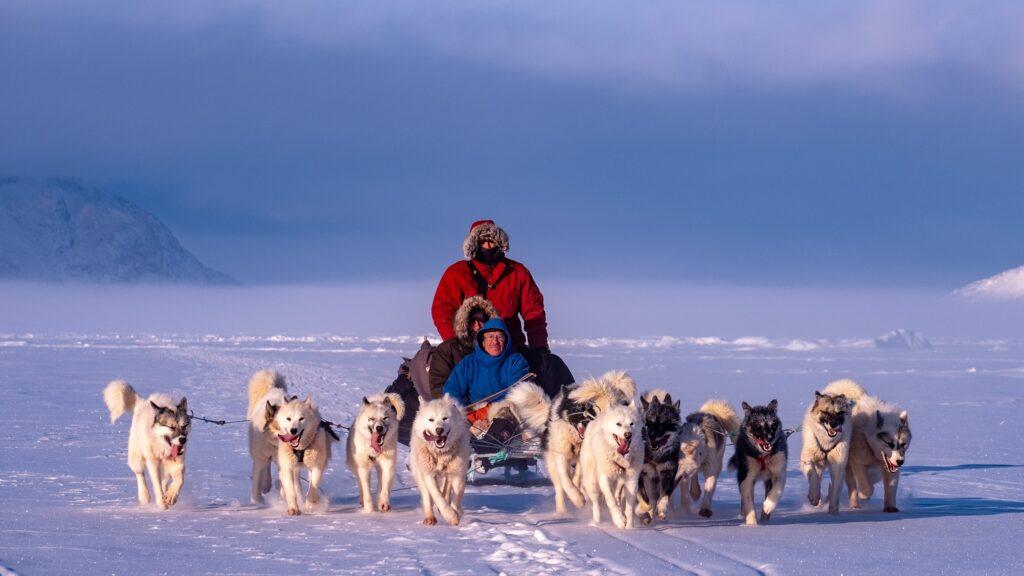 Dogsledding during winter