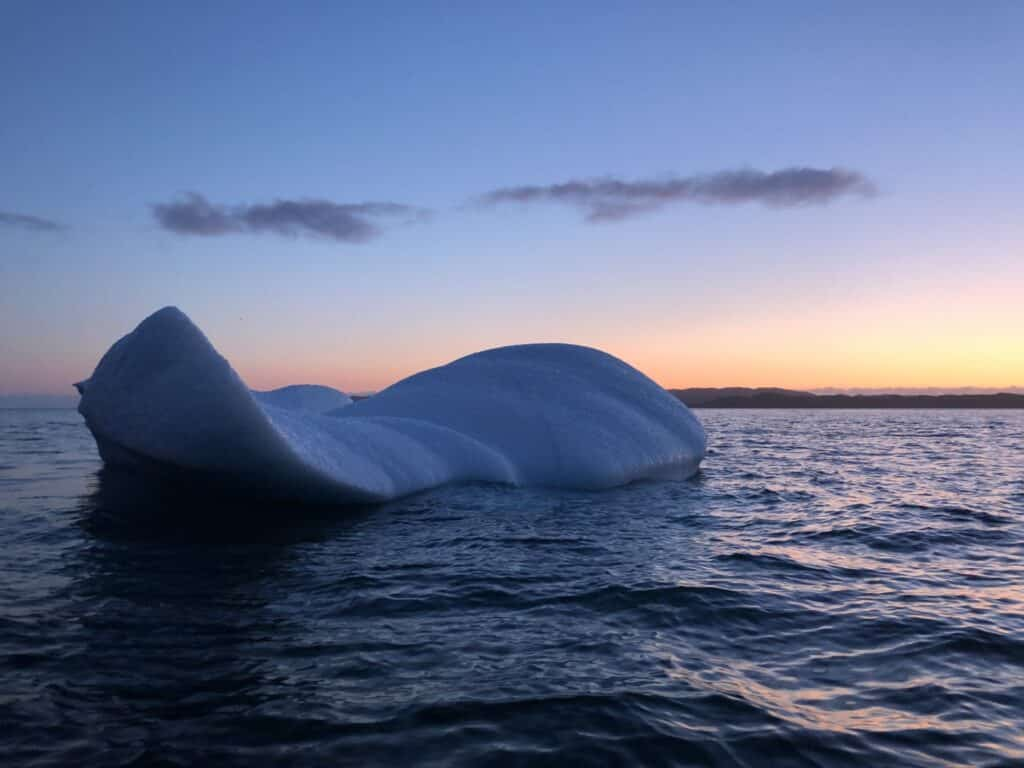 Iceberg in the water