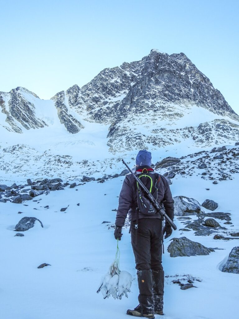 Man with a riffle looking towards a snowy mountain