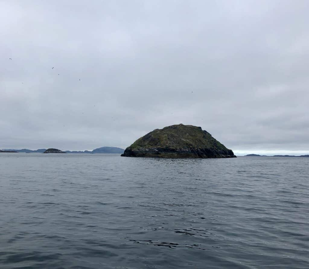 Puffin island outside Nuuk