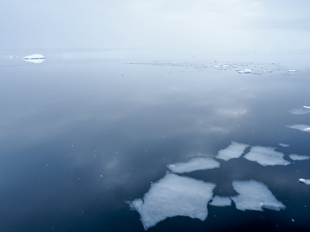 Small chunks of ice in the water