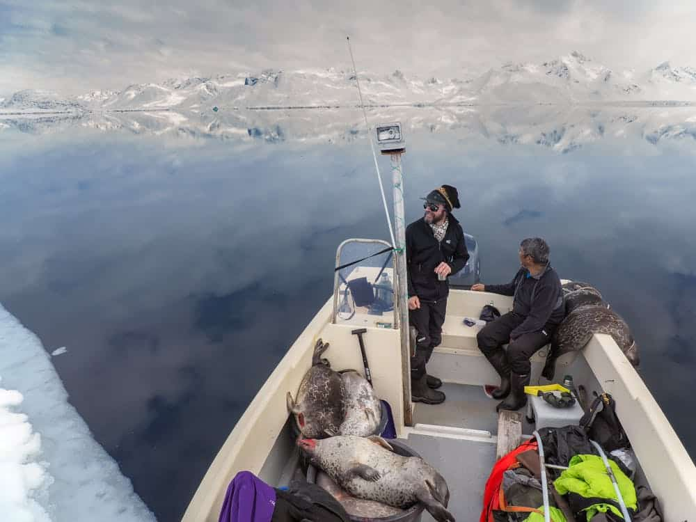 Two men on a boat with a lot of dead seals