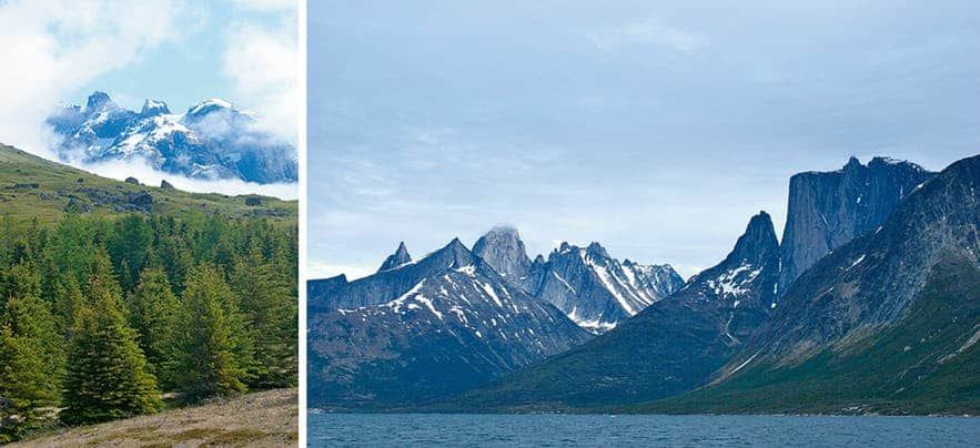 Pictures of landscape in the south of Greenland, tall steep mountains and tall trees
