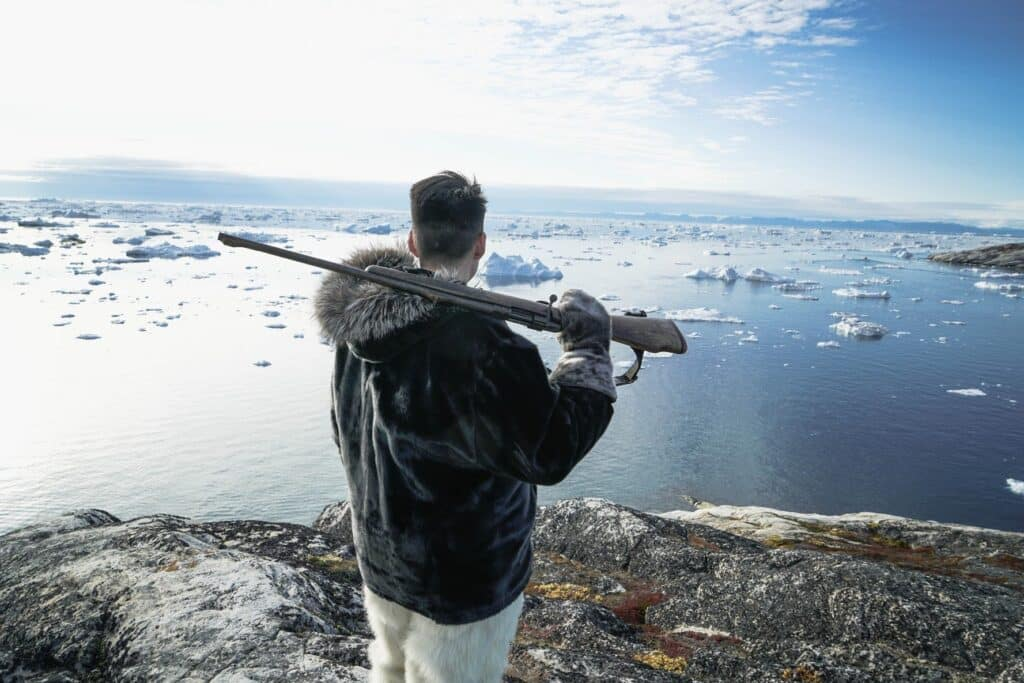 Sealhunting