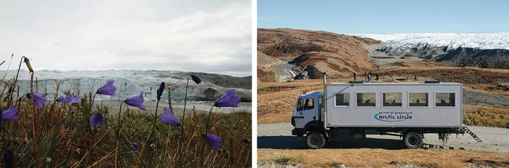 Flowers and a truck near the Ice Cap in Kangerlussuaq