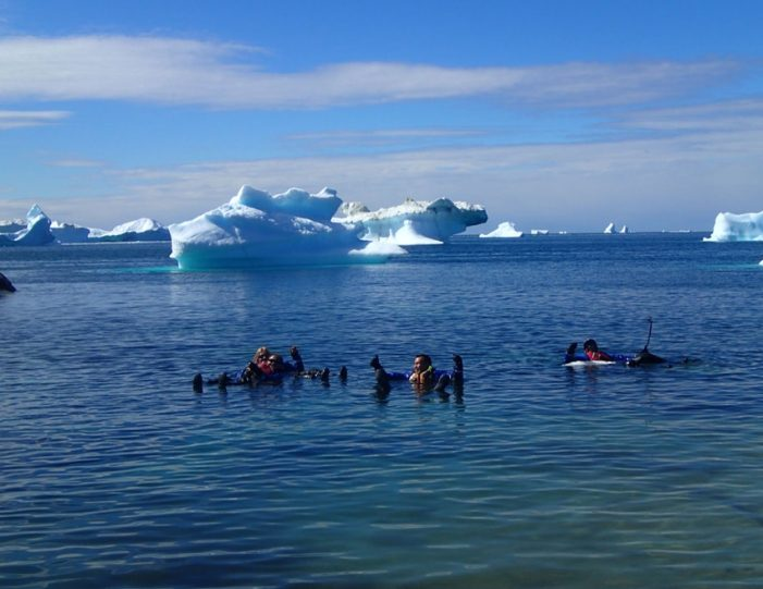 2 Day Hiking and Kayaking Adventure Ilulissat Disko Bay - Guide to Greenland4