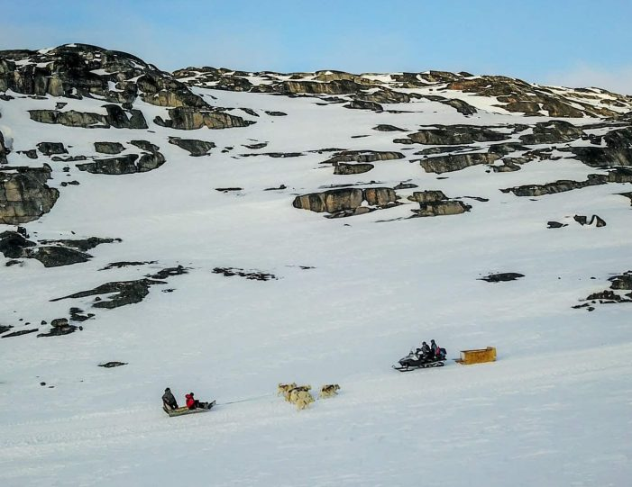 2-hours-of-dogsledding-ilulissat-Guide to Greenland1