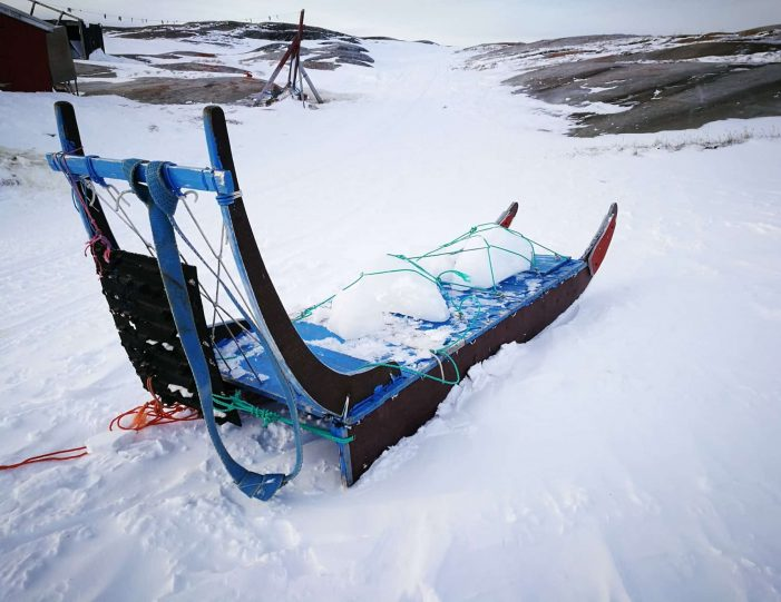 2-hours-of-dogsledding-ilulissat-Guide to Greenland8