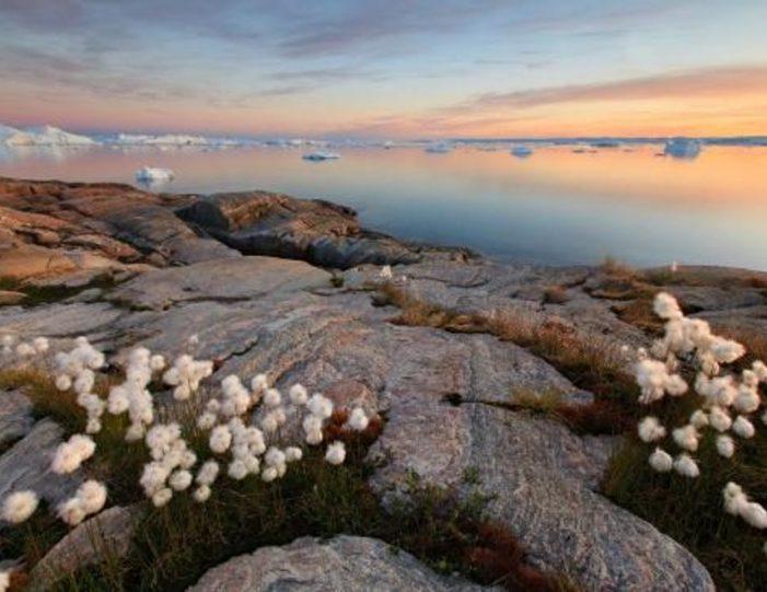 3-days-ilulissat-adventure-ilulissat-disko-bay-day-Guide to Greenland8