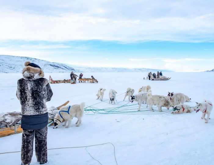 4-hour-dog-sledding-tour-kangerlussuaq-west-greenland - Guide to Greenland1