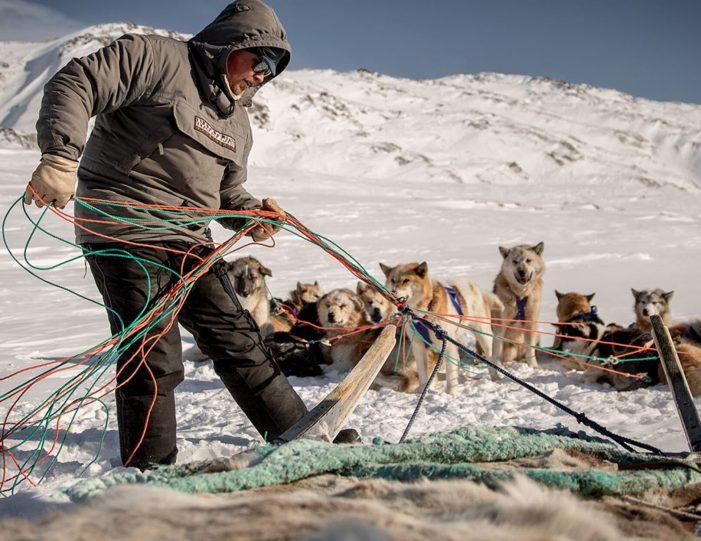 4-hour-dog-sledding-tour-kangerlussuaq-west-greenland - Guide to Greenland10