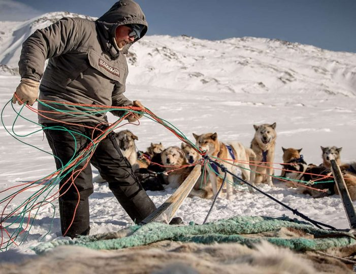 4-hour-dog-sledding-tour-kangerlussuaq-west-greenland - Guide to Greenland10