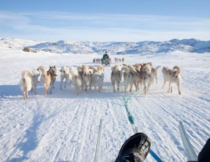 4-hour-dog-sledding-tour-kangerlussuaq-west-greenland - Guide to Greenland11