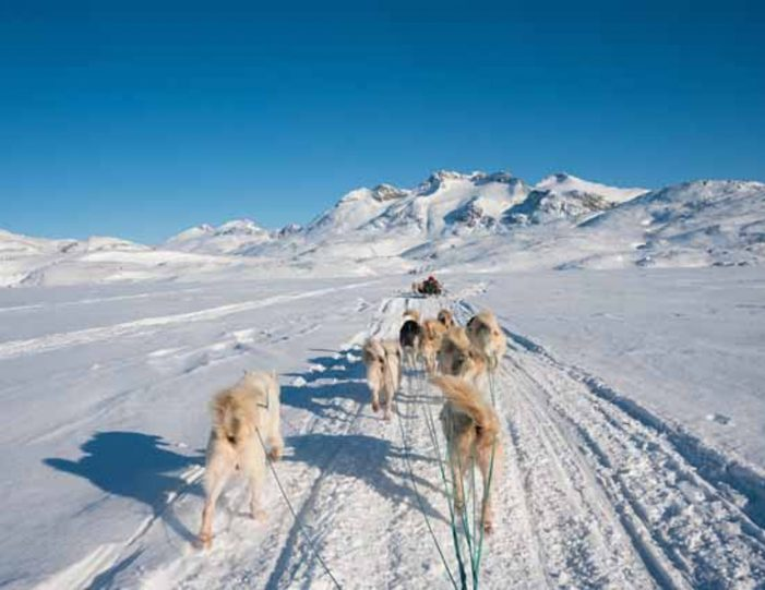 4-hour-dog-sledding-tour-kangerlussuaq-west-greenland - Guide to Greenland12