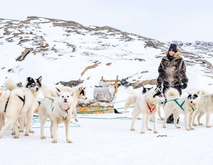 4-hour-dog-sledding-tour-kangerlussuaq-west-greenland - Guide to Greenland15