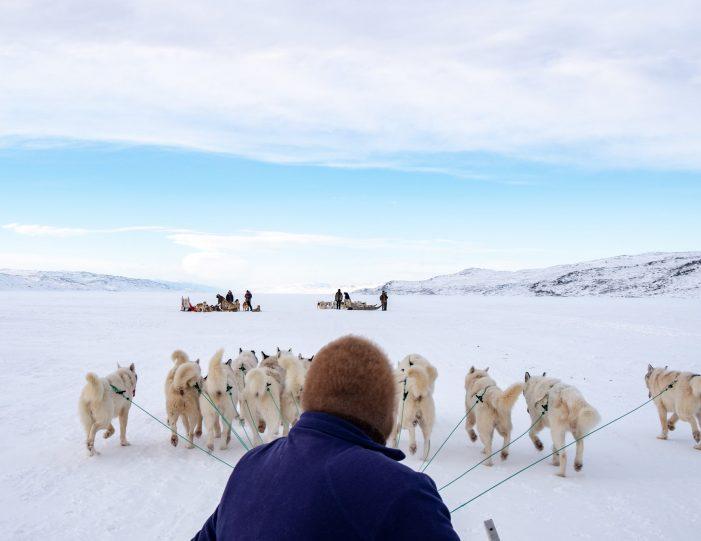 4-hour-dog-sledding-tour-kangerlussuaq-west-greenland - Guide to Greenland5